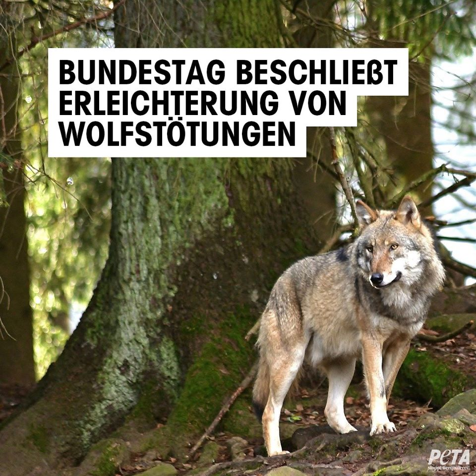 Screenshot Facebook Peta Deutschland